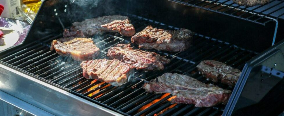 Best Gas Barbecue Grills